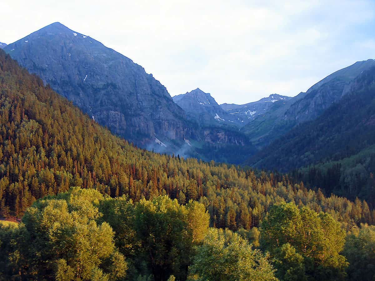 Image of trees, mountains